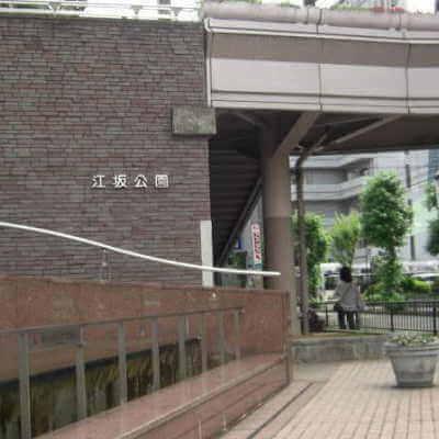 ミールズ江坂近く江坂公園>