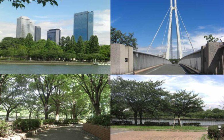 大阪市北区ジョギングコース
